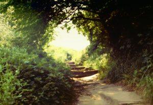 Steps__Halton_Castle__Runcorn__Cheshire_1984